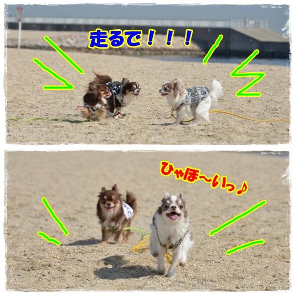 page_20120418214807.jpg