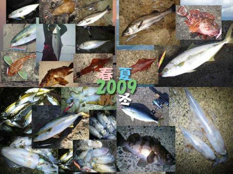2009 shakurimanT