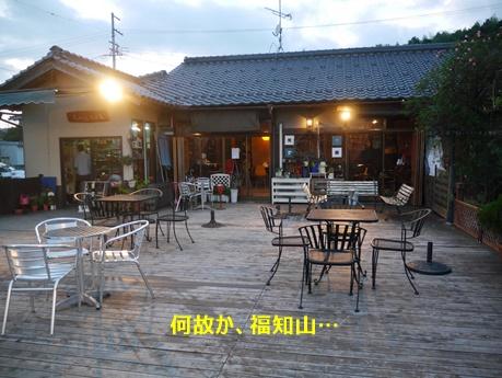 8Lucys cafe