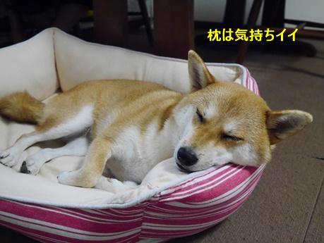 2枕にする
