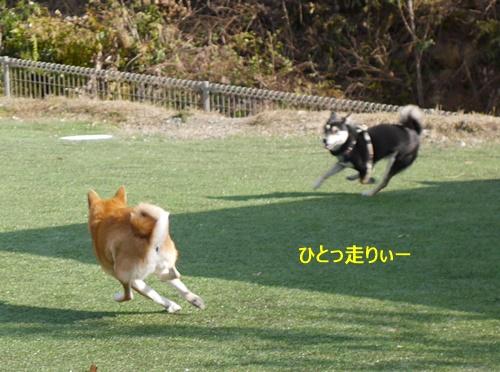 3少し走る