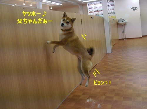 8喜び爆発