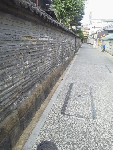 P1000034.jpg