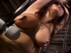 M女奴隷調教記録1 - エロ動画 アダルト動画