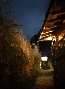 鶴の湯(小道)_R