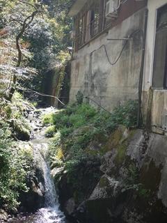 自然の滝_R