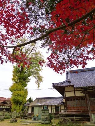 kouseiji1_20111206180728.jpg