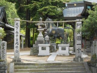 13阿波大日寺 -神社25