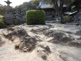 14常楽寺-庭25