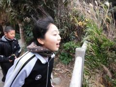 佐多岬 強風