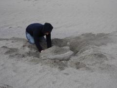 浜尻海岸 砂遊び くまちゃん