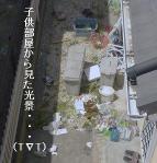 008_20100517100118.jpg