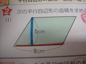 DSC00150_convert_20130226074606.jpg