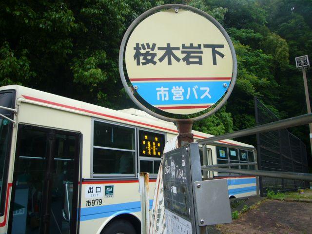 桜木岩下バス停
