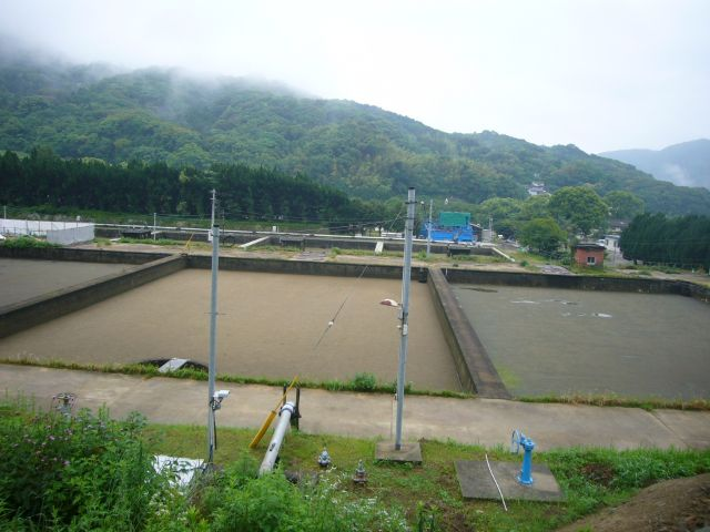 桜木水源地貯水池