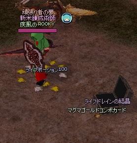mabinogi_2013_03_10_001.jpg
