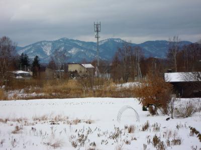 arishima1.jpg