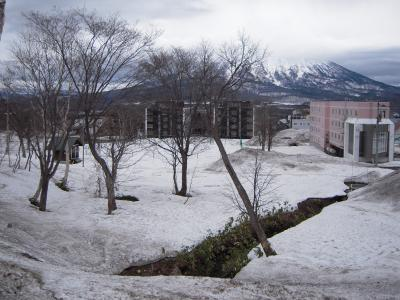 hirahu1-9.jpg