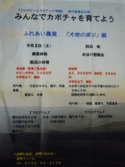 kabotya4-8.jpg