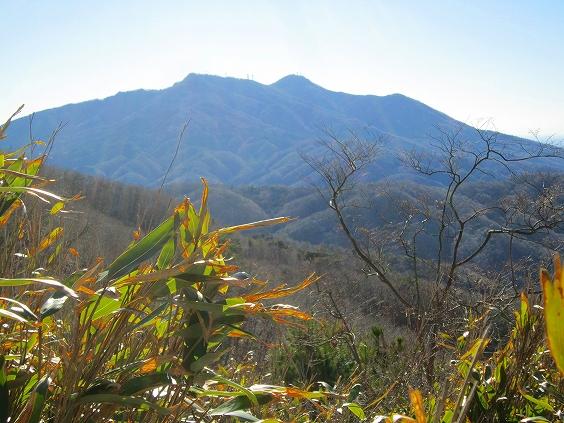 きのこ山からの筑波山