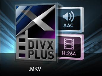 gigazine-divx-serial_number_001.png