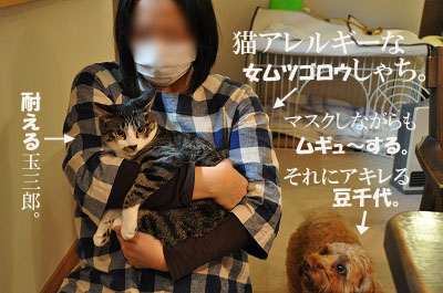 DSC_0077-1.jpg