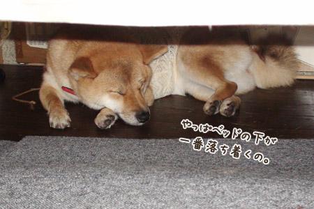 ベッドの下~