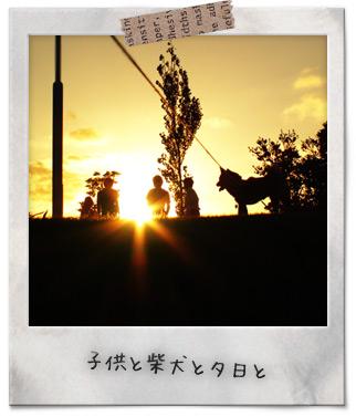 夕日シリーズ3