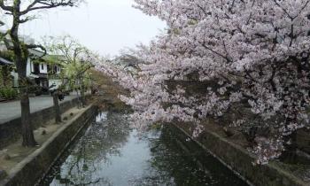 倉敷 美観地区6