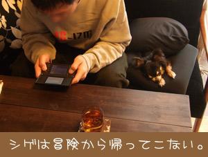 DSCF0883.jpg