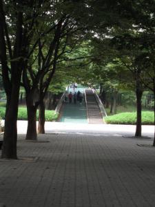 指輪の池3