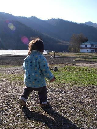 下の子と散歩