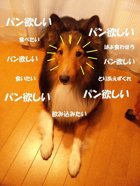 ★02 パンくれ