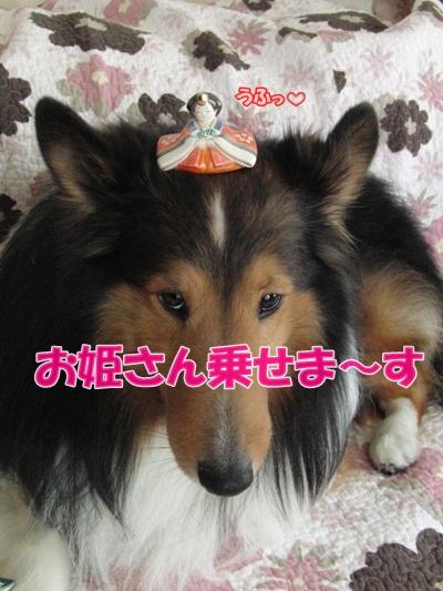 ☆07 姫乗せ