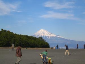 三保の松原と富士山2