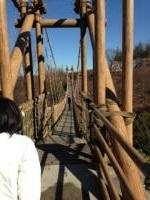 小田原わんぱく広場 吊り橋