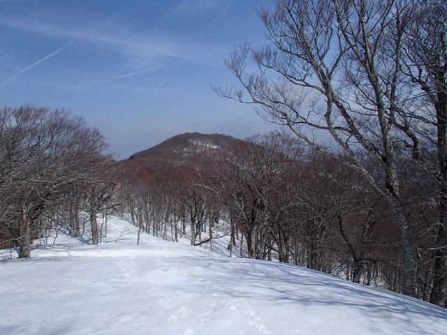 回廊の先に花染山