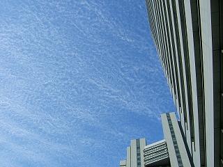 2011_01040011.jpg