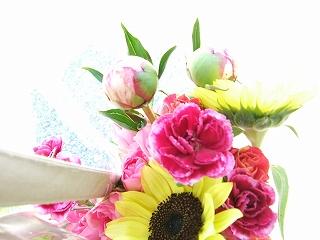 2011_07050090.jpg