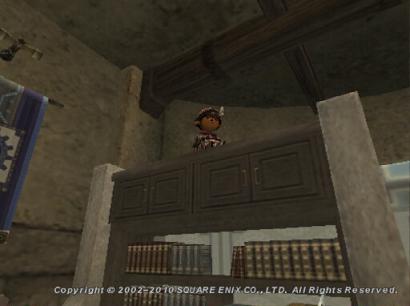 本棚の上のタルタル1