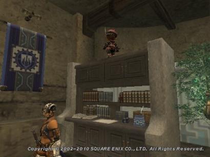 本棚の上のタルタル2