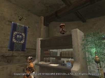 本棚の上のタルタル3
