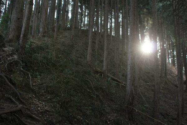 kuritaira2_173.jpg