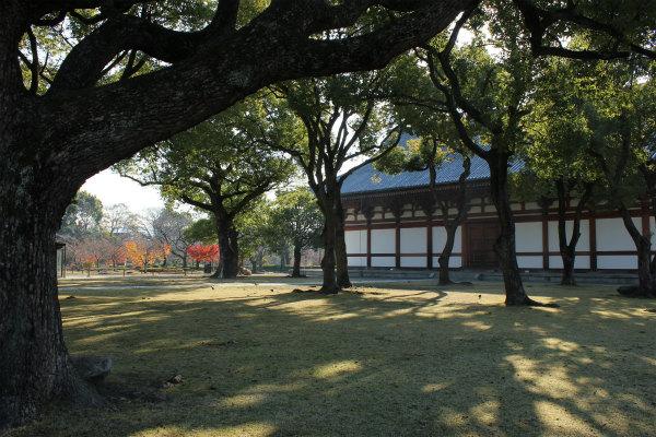 kyoto12_0982.jpg