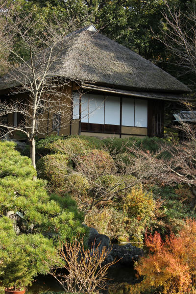 kyoto12_1182.jpg