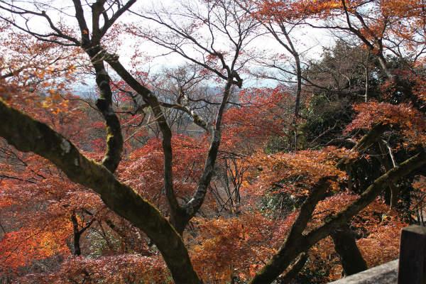 kyoto12_1199.jpg