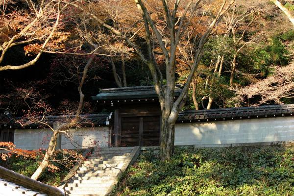 kyoto12_1240.jpg