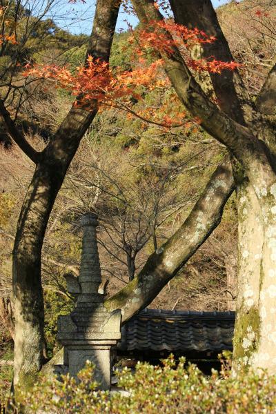 kyoto12_1254.jpg