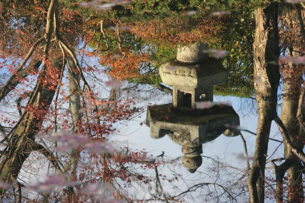 kyoto12_1281.jpg