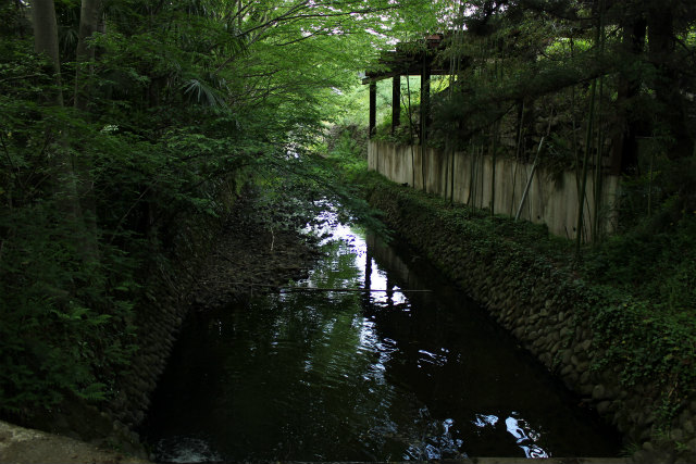 nanakuni13-5_085.jpg
